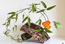 *Ikebana* / by Neusa Fujimoto
