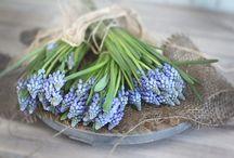 UK - Fresh flowers / Fresh flower stock available.