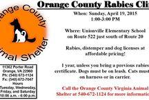 Info for Pet Owners / Rikki's Refuge - www.rikkisrefuge.org