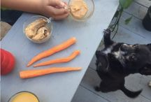 Dog Treat and Food Recipes / Try out these homemade treat and food recipes for dogs.  / by Dogster