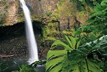 Hawaii Trip 2013 / by Kim Cooper