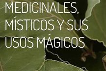 poder medicinal