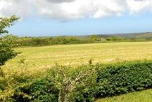 Camborne / Property for sale in Camborne.
