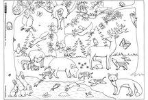 ovi állatok