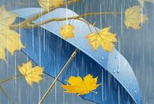 Jesień,deszcz