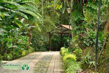 Jardín Botánico Eloy Valenzuela / Jardín Botánico Eloy Valenzuela en Floridablanca