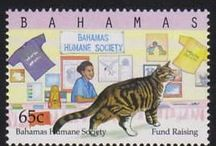 Cats on Post Stamps