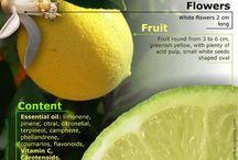 Info fruit, veggies, herbs, plants