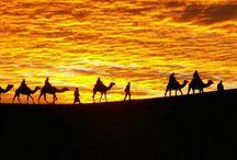 Morocco camel trekking