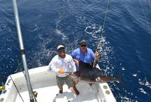 Fishing Los Suenos, Costa Rica:  Near Jaco on Mid-Pacific Coast / Los Suenos is only 50 minutes from San Jose which eliminates overnights inbound/outbound.  Beautiful area with greatafishing and nightlife