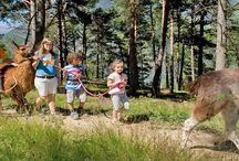 Familienurlaub im Lindenhof / Im umfangreichen Sport- und Unterhaltungsprogramm für Kinder und Erwachsene ist im Lindenhof****s immer was los!