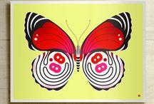 butterflies / by Catherine Earp