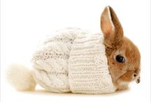 Bunny & Baby Critters Love