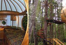 casa en canada / en el bosque