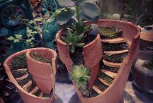 Miniature Gardens / Mini garden