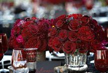 Wedding | Fierce Red / by Eloquence D coordination | Déborah Blaise