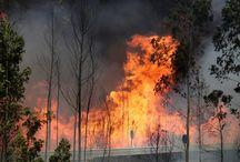 OUR TEARS AND DEEP GRIEF - Unser Katastrophen, Brände, Überschwemmungen