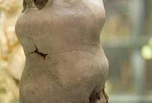 rare anatomic shapes- anomalia