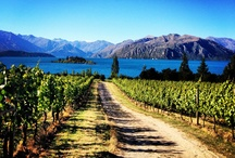 Food and Wine Festival / Wanaka food and wine to blow your mind. October 20th and 21st 2013