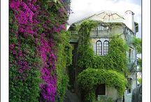 Provence - Saint Paul de Vence.
