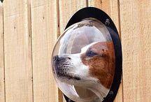 Ideas para nuestros perros y gatos. / Creaciones e ideas muy utiles para nuestros perros o gatos.