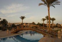 Egypt Hotels / Egypt Hotels
