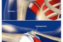 Fyzioterapia