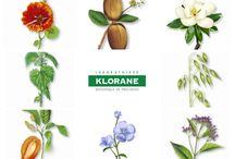 За Klorane / Вече 48 години Лаборатории Klorane, марка пионер, следват стриктна линия на поведение основана върху уважението на фармацевтичната етика, включваща изключителна строгост във всички етапи на изработване на продуктите, на ботаническото умение, основоположно за марката, чиито продукти са на базата на растителни екстракти, на автентичността, основно качество на марката, също както и силното желание за опазване на растителното ни наследство.