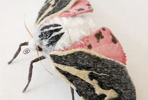 Insectos / by Alejandra Plaza