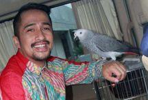 Irfan Hakim Lebih Suka Main Burung Daripada Handphone