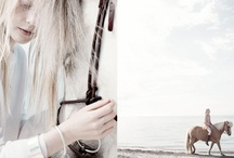 minimal horse