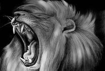 Leo's & Beasts