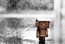 love and rain