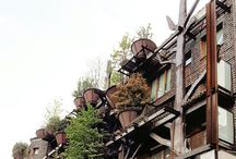 tree house in Turin