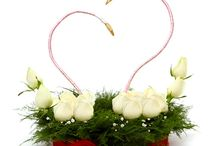 valentines gifts / Ferns N Petals has launched valentines romantic gifts