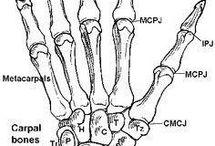 Эскизы (руки и ноги)