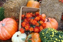 Outdoor Fall Decor / Outdoor fall decor, halloween decorations, traditional Thanksgiving outdoor decorations