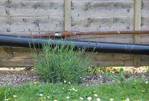 Meu Jardim Encantado na Inglaterra / No meu jardim tem Lavanda, Alecrim, Salvia, Tomilho e Manjericão, alem de todas estas ervas aromáticas tem também   Pássaros, abelhas e esquilos. O melhor do lugar do mundo é aqui, no Meu Jardim Encantado. Fotos breakfast and happy hour na companhia da natureza