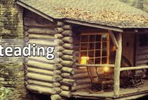 Homesteading / by Adam Deml