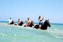 Horse Back Riding & Yoga Retreat Vision
