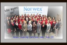 Becoming a Norwex Consultant / Information on starting your own work at home business as a Norwex Independent Sales Consultant
