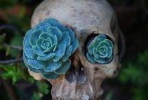skulls and dead / by thewatt