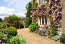 Drum House garden / Our new garden
