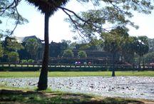 Cambodia 'Nov 14' / Travel