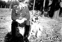 Third Reich and animals