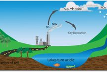 Acid Rain / Factories release gases from burning fuel and coal, causing the addition of SO2 and NO into the air. The SO2 then mixes with the H2SO4 while the NO mixes with HNO 3 and as a result the chemicals when cooled from the clouds will create acid rain. These acid rains can cause major erosion to metal and stone which can be dangerous in many circumstances. Meanwhile, it can also environmentally disturb wildlife and the ecosystem of plants, trees and fishes due to increase level of acidity.