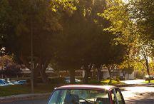 Car - BMW