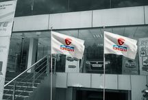 GEM group Branding