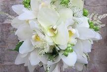 White Bridal Bouquets / Inspiration for white bridal bouquets.