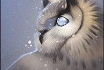 OWL •,•
